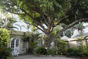 cheapest accommodation in port elizabeth